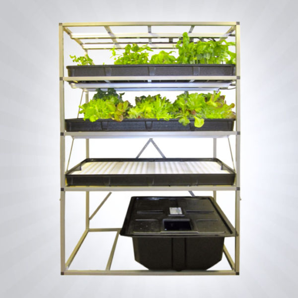Indoor LED Garden