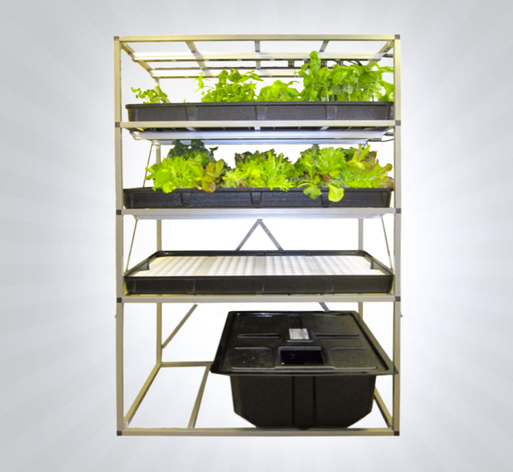 Indoor Hydroponic LED Garden